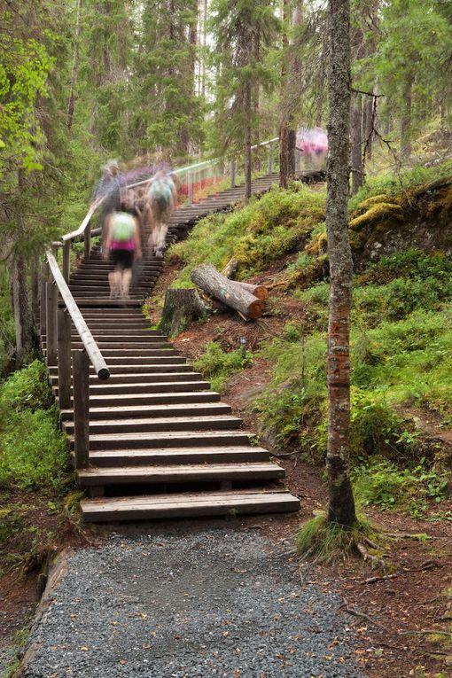 Karhunkierroksen varrella on jyrkkiä nousuja. Osaa on helpotettu portailla.