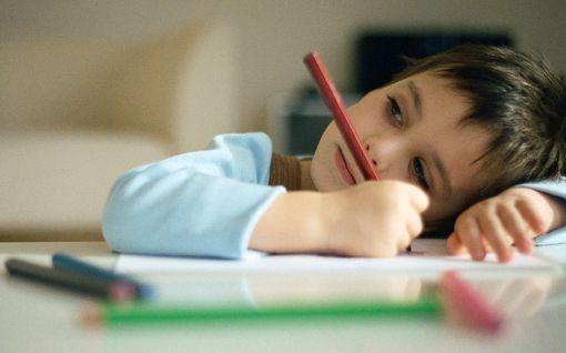 Lapsen keskittymiskykyä voi parantaa kotikonstein - aivotutkijan 11 vinkkiä