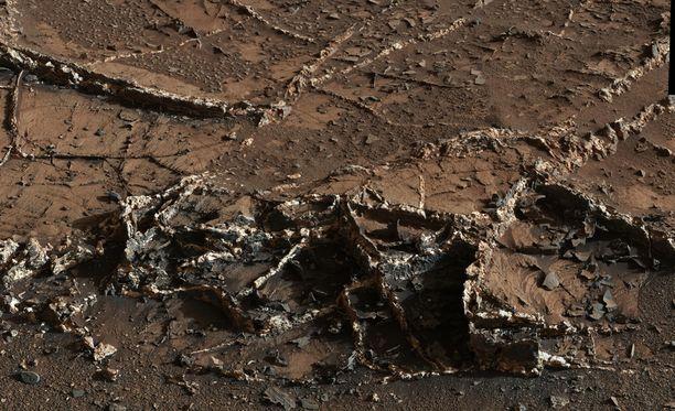 """Avaruudesta löytyvä elämä ei tutkijoiden mukaan tule olemaan """"pieniä vihreitä miehiä"""". Kuva Marsista."""