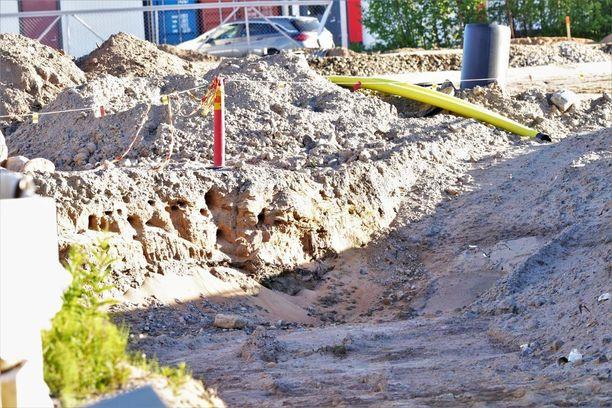 """Törmäpääskyt löysivät sopivan """"törmän"""" Prisman rakennustyömaalta."""