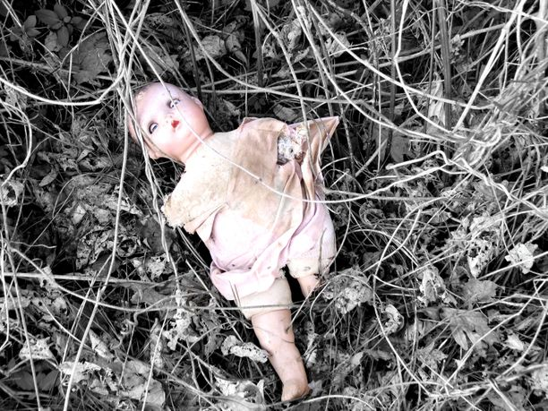 Pedofiili on henkilö, joka on seksuaalisesti kiinnostunut lapsista. Hän ei ole kuitenkaan välttämättä toteuttanut halujaan.
