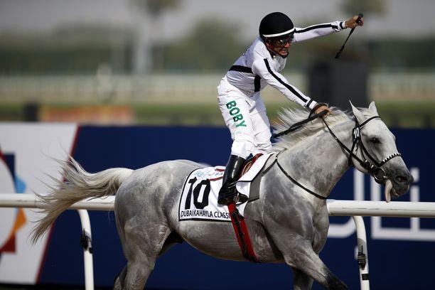 Saudi-Arabiassa järjestetään karkauspäivänä 29.2.2020 rahakas hevoskilpailu. Arkistokuvassa saudiarabialainen jockey Roberto Perez on Tallaab Al Khalediah Dubain hevoskilpailussa maaliskuussa 2018.