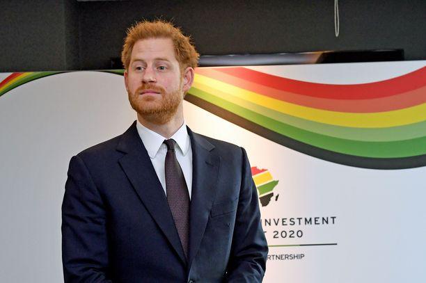 Prinssi Harryn ekopuheet ja ristiriitainen käytös hämmentävät.