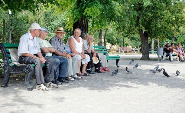 Eläkeläismiehet viettävät aikaa puluja ruokkien.