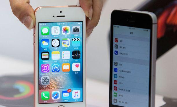 Ennakkoarvioiden mukaan nyt julkaistavassa uudessa iPhonessa ei aivan valtavia uudistuksia nähdä, sillä puhelinmalli täyttää ensi vuonna 10 vuotta, ja suurimmat uudistukset jätettäneen sinne.