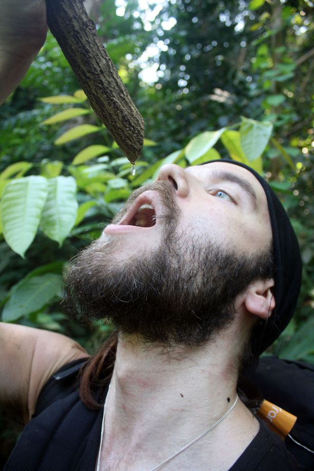 Viidakon kosteudessa ja kuumuudessa on juotava paljon. Jos vettä ei voi keittää, köynnöksistä ja puista voi saada puhdasta vettä.