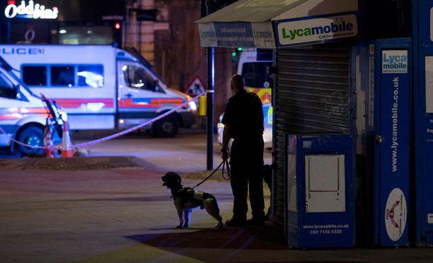 Poliisikoira oli ilmeisesti tuotu paikalle selvittämään mahdollisen pommin mahdollisuutta.