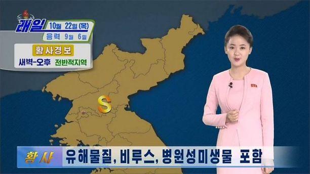 Keltaisesta pölystä varoitettiin keskiviikon TV-lähetyksessä.