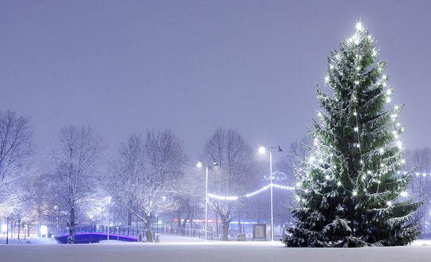 Tänä vuonna Etelä-Suomeenkin on hyvät mahdollisuudet saada valkoinen joulu. Kuva Salosta vuodelta 2011.
