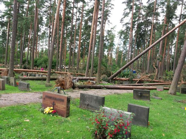 Lukuisia puita oli kaatunut pitkin hautausmaata.