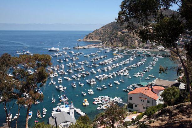 Hääpaikkana on Santa Catalinan saari Los Angelesin edustalla.