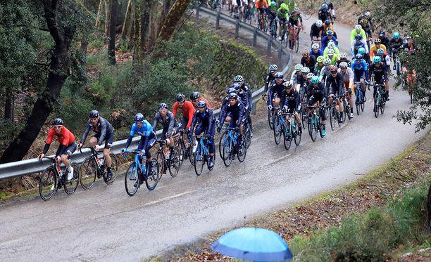 Mallorcan saari on suosittu paikka pyöräilyn harrastajille.