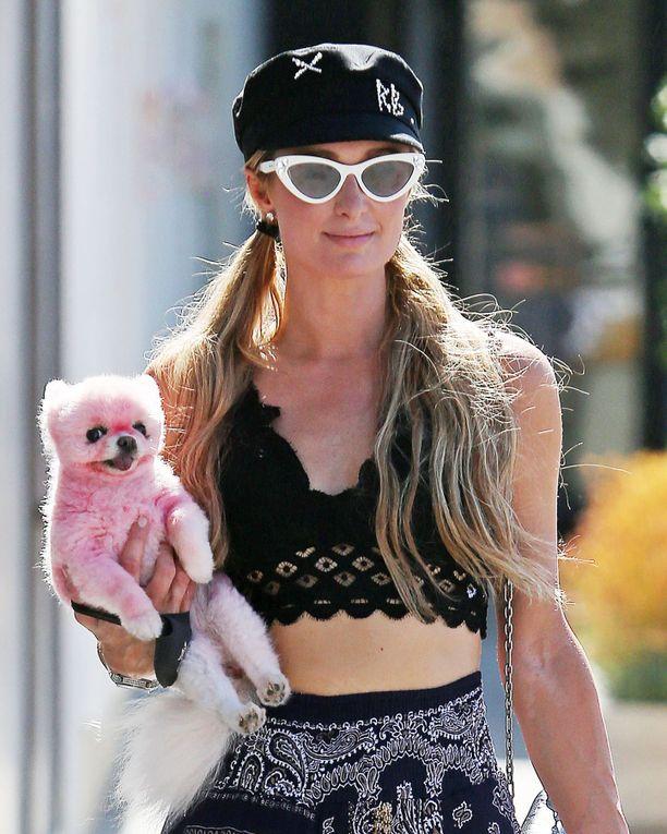 Paris Hilton ulkoilutti pinkkiä koiraansa kaupungilla.