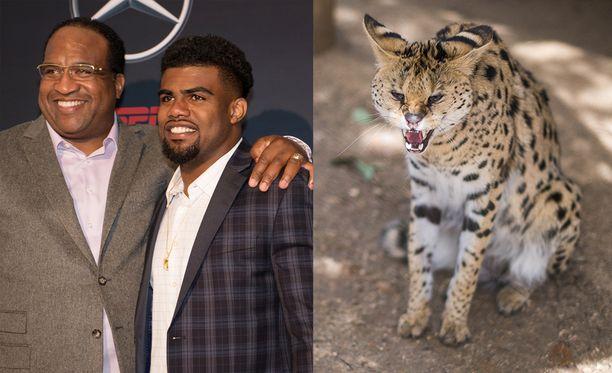 Ezekiel Elliottin Stacy-isää epäillään servaalin päästämisestä vapauteen. Kyseessä on kissaeläin, joka muistuttaa gepardia.