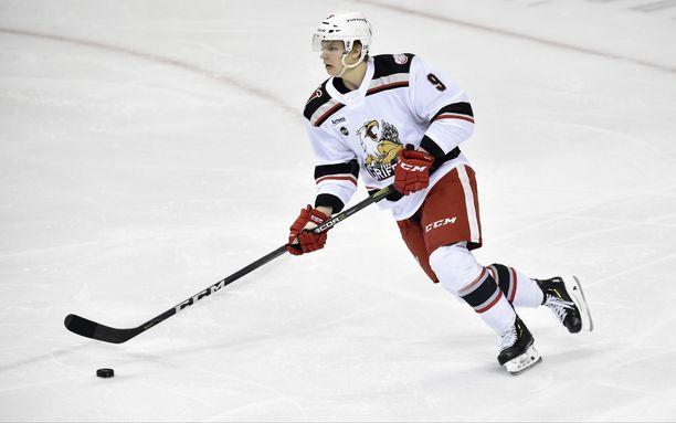 Vili Saarijärvi pelasi Grand Rapids Griffinsin riveissä yhteensä 125 runkosarjaottelua. NHL-unelman metsästys jatkuu nyt toisaalla.