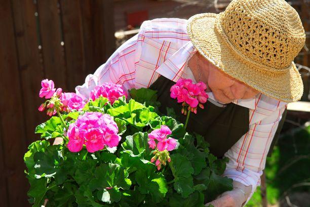Vanhenemisen tuomista rajoituksista ja menetyksistä puhutaan paljon enemmän kuin mahdollisuuksista.