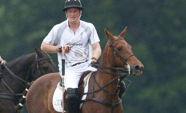 Prinssi Harry on innokas hevospooloilija.