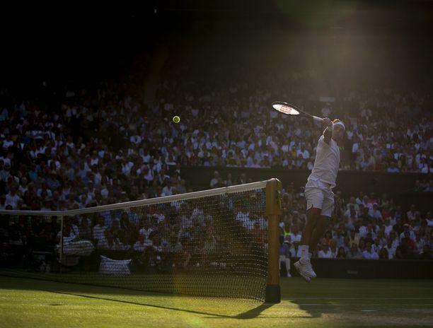 Tennisvedonlyönti kestää isompien markkinoiden vuoksi isompia panoksia, mikä on selkeä etu, kun vedonlyöjä haluaa lisätä kassan kiertoa. Roger Federerin (kuvassa) ja Novak Djokovicin taannoinen Wimbledon-finaali tarjosi vedonlyöjille jännitettävää.