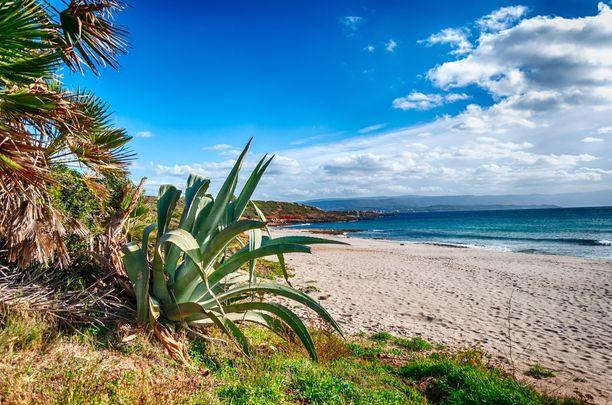 Sardinian saarella riittää kauniita hiekkarantoja.
