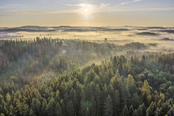 Muun muassa metsien määrä nosti Suomen luontomatkakohteiden listan kärkeen.
