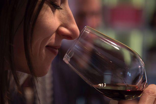 Viininmaisteluun saa nyt opastusta verkon kautta.