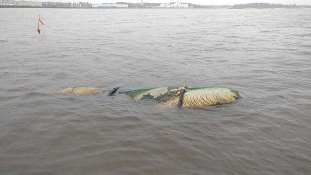 Tästä kuvasta nousi kova kohu, joka on johtamassa tutkintapyyntöön merivartiostolle.