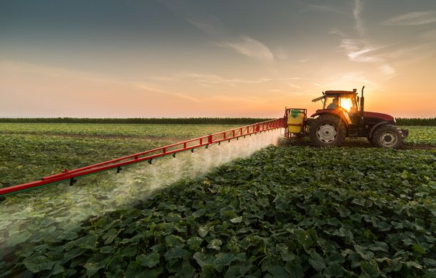 Missourilainen viljelijä väittää, että hänen persikkatiluksensa tuhoutuivat naapuriviljelmiltä kulkeutuneiden rikkaruohomyrkkyjen vuoksi.