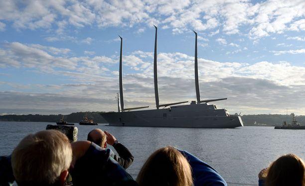 Laivabongarit pääsivät näkemään todellisen harvinaisuuden Kielissä.