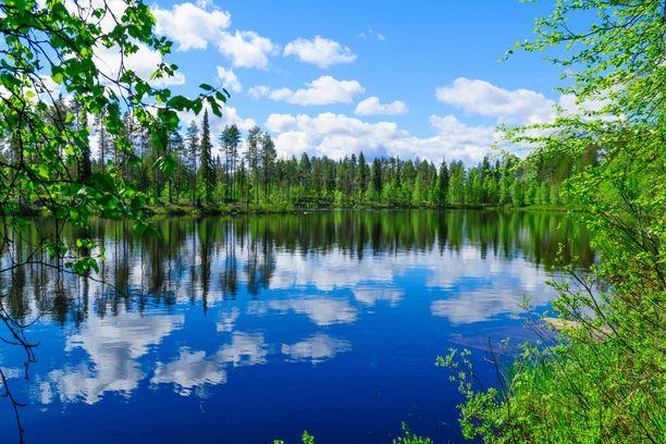 Metsävideo tai sellainen video, jossa on vaikkapa järvi tai muuta luonnonvettä, rentouttaa ja rauhoittaa katsojaa.