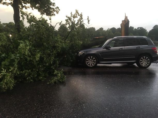 Helsingin Pitkäsillanrannassa puu oli kaatunut auton päälle.