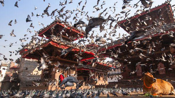 Kathmandu on elpymässä maanjäristyksen jäljiltä.