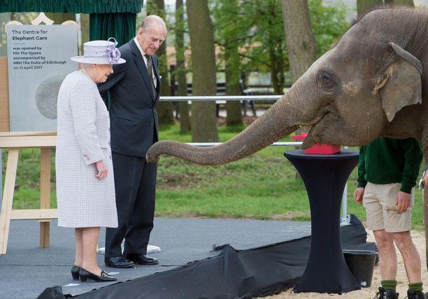 Aluksi Donna tutkiskeli kuningatarta vähän etäämmältä.