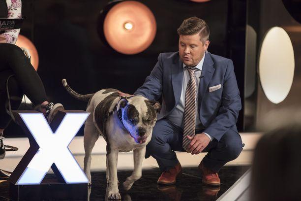 Janne Kataja tutustuu torstain jaksossa neiti X:n koiraan.