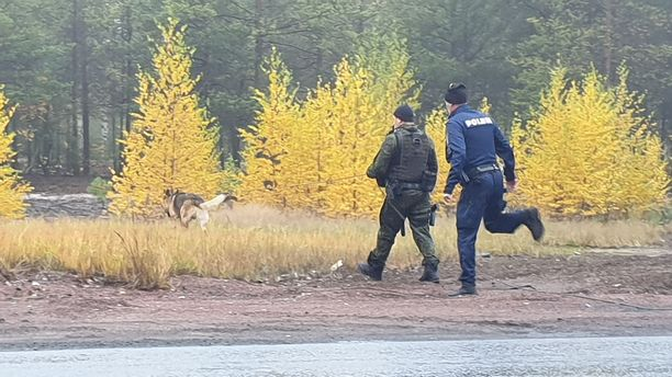 featured suomeksi ukrainalaiset naiset etsii miestä harjavalta