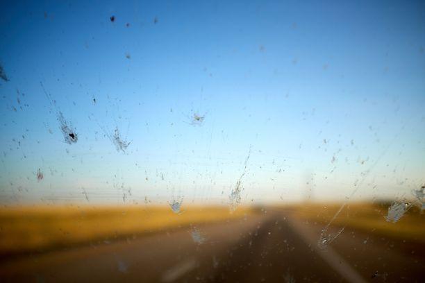 Hyönteisiä liiskautuu autojen tuulilaseihin huomattavasti vähemmän kuin ennen ja syynä ei ole autojen muuttuminen aerodynaamisemmiksi.