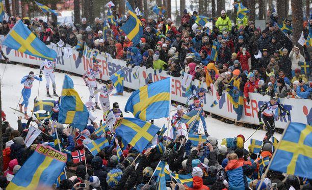 Hiihdon olympiavoittaja Björn Lind ja alppilegenda Ingemar Stenmark ovat jättäneet kohujärjestö Ren Idrottin. Kuva ei liity tapaukseen.