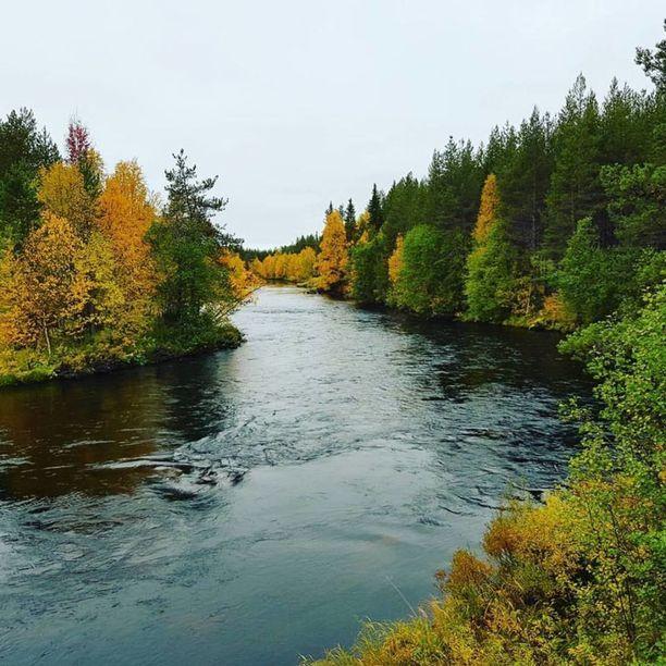 Ruska alkaa olla Lapissa pian parhaimmillaan. Kuva Kolarista Äkäsjoelta.
