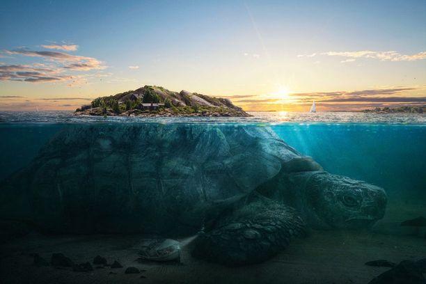 Turle Island -kuva on yksi taidekuvien finalisteista.