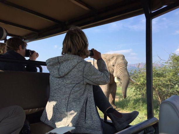 Etelä-Afrikassa uhanalaisten eläinten kuvaaminen on iso osa työtä.  Kuvien avulla on saatu tehtyä laaja sukupuu kaikista kansallispuiston eläimistä.