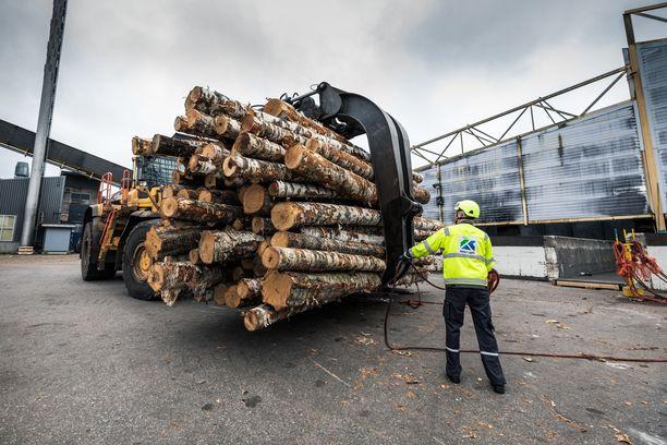 Metsäteollisuus ry irtautuu työehtosopimustoiminnasta, ja työehdoista sopiminen siirtyy yritystasolle. Kuvituskuva.