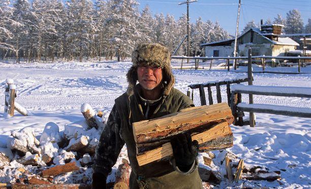 Talvisaikaan kuluu reippaasti polttopuuta.