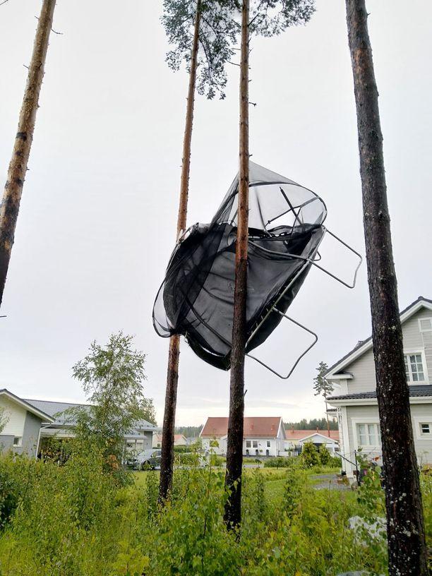 Ylöjärvellä navakka kesätuulenpuuska pyyhkäisi perheen trampoliinin naapurin pihapuuhun. Tapaus sattui heinäkuussa.
