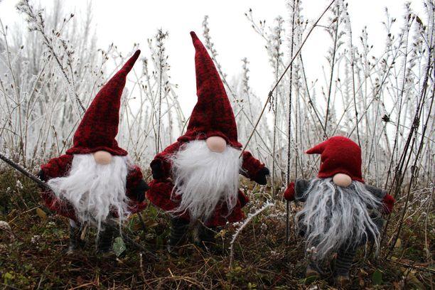 Elf on the shelf -henkisen joulukalenterin voi toteuttaa millä tahansa tonttuhahmolla.