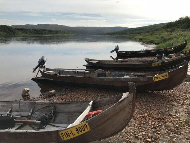 Tenojoen lohiveneet seisovat tyhinä rannoilla, koska uusi kalastussääntö on leikannut rajusti kalastusmatkailijoiden määrää.