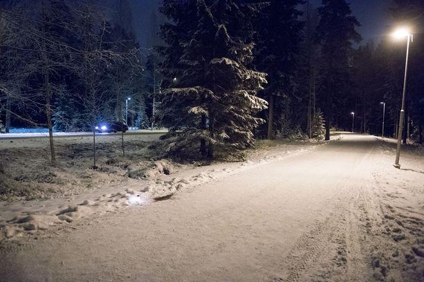 Lehdenjakaja löysi perheenisän surmattuna varhain 29. joulukuuta 2014. Kuva Tesoman valtatien viereiseltä kävelytieltä, josta perheenisä löytyi surmattuna.
