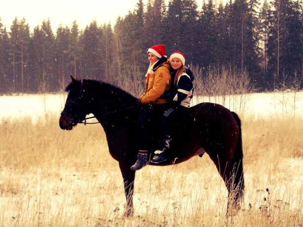 Tämä kuva ilmentää hyvin perheemme joulua, kaikki viettävät yhdessä aikaa, eläimet ja ihmiset!