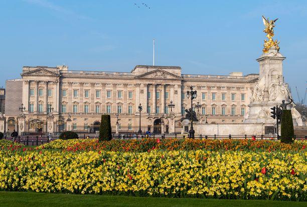 Buckinghamin palatsin alueelta löytyy mittava puutarha.