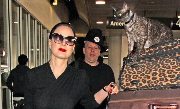 Dita Von Teesen kissa oli valjaissa, ja omistajansa tiukassa otteessa.