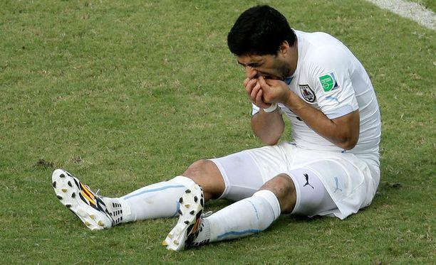 Maalipyssy Luis Suárez herättää tunteita.