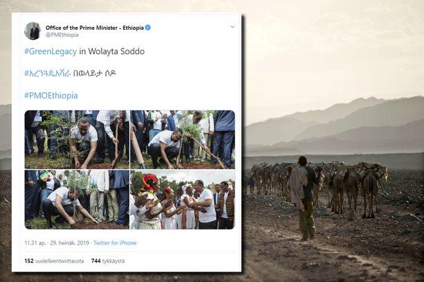 Etiopian tavoitteena on istuttaa 4 miljardia uutta puuta ilmastonmuutosta vastaan taistelemiseksi.